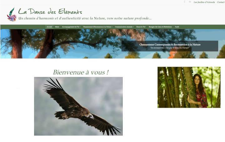 Projet Grand La Danse des Eléments - Seb Services Informatique Belfort